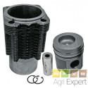 Ensemble cylindre piston Deutz BFL913, BFL913T, BF4L913, BF4L913T, BF6L913, BF6L913T, 02925624
