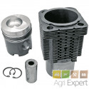 Cylindre piston moteur BFL912, 02928142, 02929969