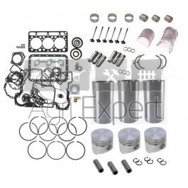 Kit de révision moteur Kubota D950, D950BH, D950B Kubota KH41, KH61, F2100E tracteur B7200D, B1750D, B8200E, tondeuse F2100, Bobocat 543