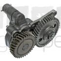 Pompe à huile moteur Case IH D179, D155, 3136429R95, 87714393