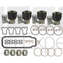 Kit revision moteur MWM D325-4 coussinet, chemise, piston, joint, moteur Renault, Fendt 4 cylindres 7701454416