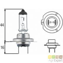 Ampoule H7 24 volts 70W Filament renforcé