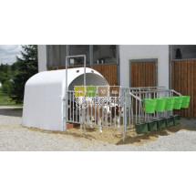 Grand igloo CalfHouse Premium 5 veaux avec clôture