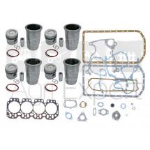 Kit de révision moteur John-Deere 4202D tracteur 400, 401, T700, 2020, 2120, 2510 avec pochette de joint